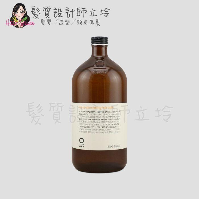 『洗髮精』凱蔚公司貨 OWay 激活洗髮精950ml HS05