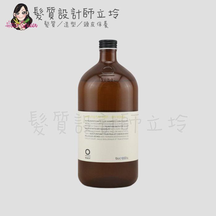 『洗髮精』凱蔚公司貨 OWay 淨化洗髮精(乾性頭皮)950ml HS04